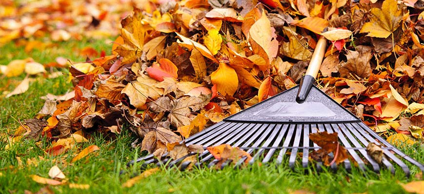 Clean Up On Fall Lawn Care Equipment - PenFed Your Money Blog